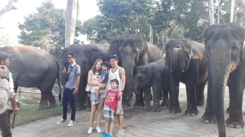 Bali Quad Bike And Elephant Ride